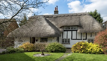 Thatch – a natural choice